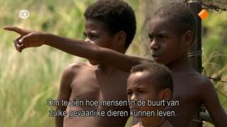 Natuur Op 2 - Het Krokodillenvolk In Papoea-nieuw-guinea