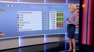Uitslagen gemeenteraadsverkiezing en referendum