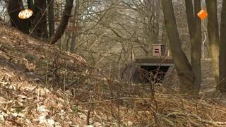Bunkers uit WO2 na maanden graven (bijna) toegankelijk