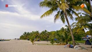 Geraldine bezoekt Marari Beach: een paradijs vol palmbomen