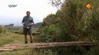 Freeks Wilde Wereld - Bewoners Van Het Bamboebos