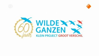 Wilde Ganzen Bosnië en Herzegovina
