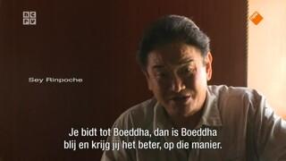 De Boeddhistische Blik: Wijsheid uit de Himalaya