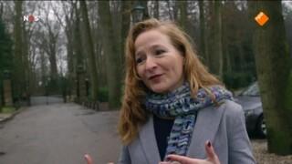 NOS Koningshuis NOS Beatrix 80