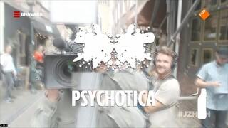Een psychose simulator