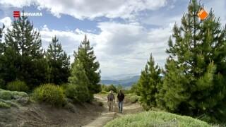 Chris gaat op zoek naar de Andescondor in Patagonië!