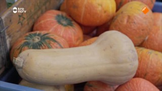 Zijn biologische groenten gezonder dan niet-biologische groenten?
