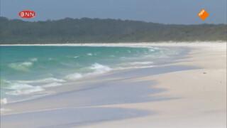 Het witste strand ter wereld