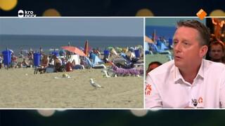Helga van Leur, Kees Buis en Arnold van Vliet over de gevolgen van de aanhoudende hitte