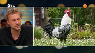 Joris Bijdendijk luidt de noodklok voor verlies Hollands culinair erfgoed