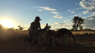 Zembla De jacht op de kangoeroe