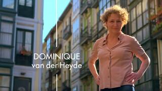 Verborgen verleden Dominique van der Heyde