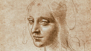 Nu te zien Leonardo da Vinci