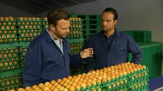 Keuringsdienst van waarde Witte eieren