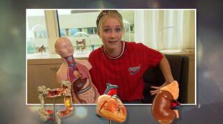 Het Klokhuis Onderzoek naar kinderkanker