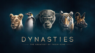 Dynasties: the making of Dynasties: the making of