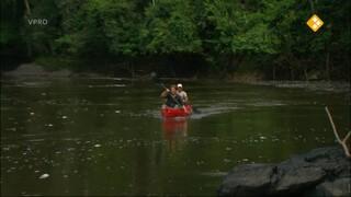 Freek in het wild Piranha