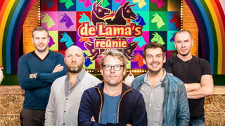 De Lama's Lama's: De Reünie