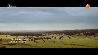 Wild Op De Veluwe - De Film