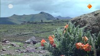 Rail Away - Peru: Cusco - Macchu Pichu - Puno