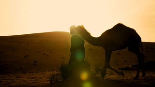 Danny In Arabistan - Saoedi-arabië: Stoere Vrouwen