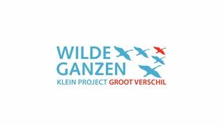 Wilde Ganzen - Nepal