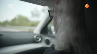 Kruispunt - Het Zwijgen Van De Familie Hond
