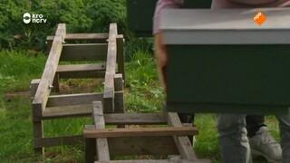 Binnenstebuiten - Binnenstebuiten Bijenspecial Met Chef-kok Ramon Brugman