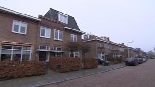 Binnenstebuiten - Debby Stylet Huis Breda, Lammetjes Voor Rotterdamse Stadsherder