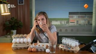 Keuringsdienst Van Waarde - Witte Eieren