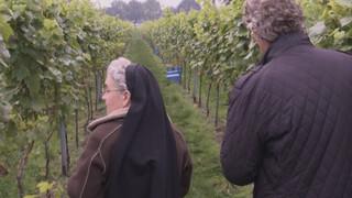 Roderick Zoekt Licht - Wijnzusters In Oosterhout