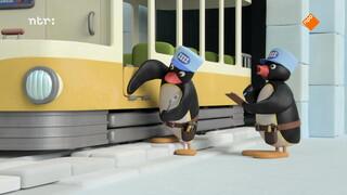 Pingu Pingu's tramproblemen