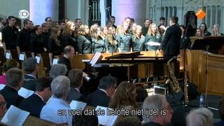 Wat is er nu anders dan vierhonderd jaar geleden bij de Nationale Synode? Stefan Paas verkent Dordrecht zowel binnen als buiten de kerk en zoekt naar de relevantie van kerk en geloof nu.