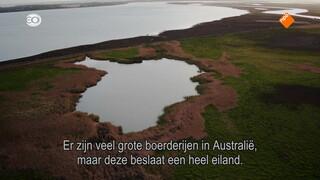 Islands Of Australia - Islands Of Australia