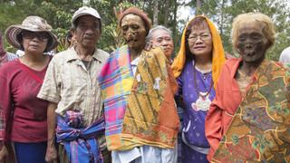 Last Days Sulawesi, Indonesië