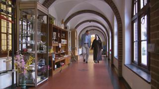 Kloosterserie - Karmelitessen Sittard