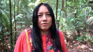 2doc Kort - Aanval Op De Amazone