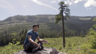 Vpro Tegenlicht - In De Ban Van Het Bos