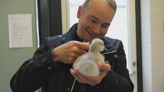 Roderick Zoekt Licht Hart voor dieren