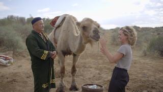 3 Op Reis - Aydarkul - Duinkerke - Taos