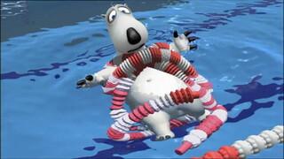 Bernard - Zwemmen