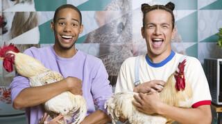 Koken met konijnen De Pet-Best-Friends-Forever honden