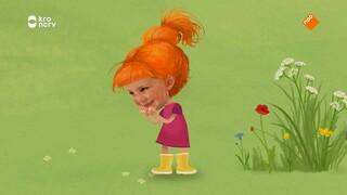 Knofje (animatie) Een Verrassing