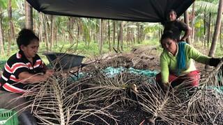 De Amazone - Colombia - 'de Boswachters'