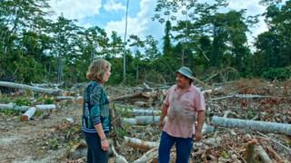 De Amazone - Peru - 'paradise Lost'