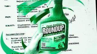 Zembla - De Macht Van Monsanto