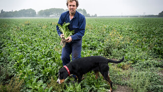 Boer Zoekt Vrouw - Boer Bastiaan En Boer Geert Jan Maken Hun Definitieve Keuze