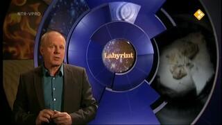 Labyrint TV De evolutie van het vliegen