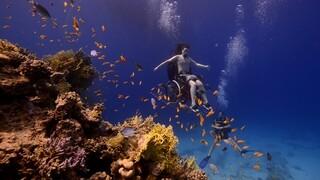 De Wandeling Dansen onderwater