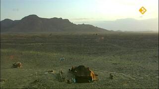 GeoClips Leven in de woestijn